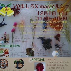 18-11-26-08-41-41-352_photo.jpg
