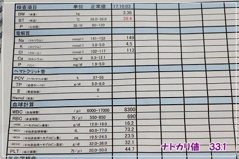 10月3日の検査結果
