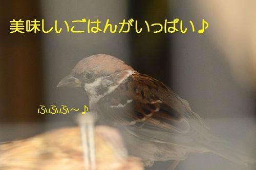 010_20171025214455b0c.jpg