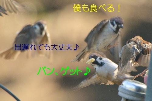 020_201710092110322db.jpg