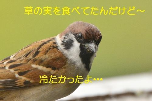 020_20171016210049ce0.jpg