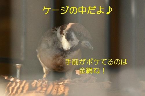 020_201710252144563d3.jpg