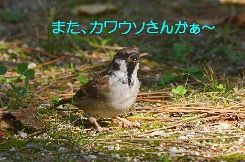 030_20171012194445ae0.jpg
