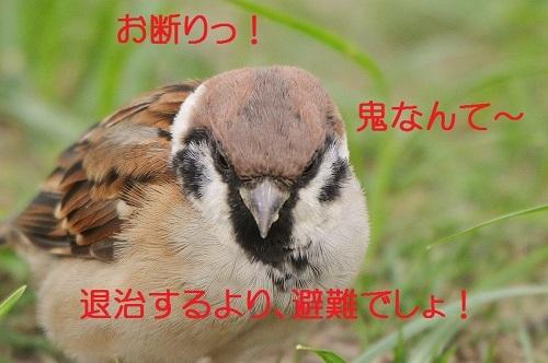 060_2017092720032991a.jpg