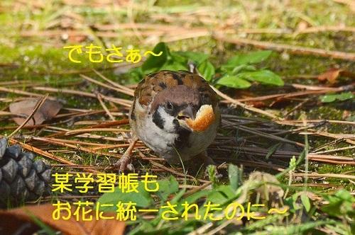060_20171015193213735.jpg