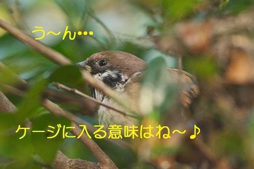 070_20171025214631d4b.jpg