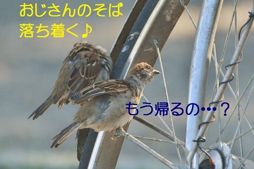 090_20171009211116ecf.jpg