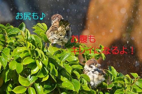 100_20171007211043ef6.jpg
