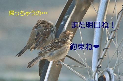 100_201710092111183f7.jpg