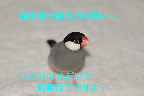 100_201710151932207e1.jpg