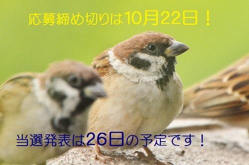 130_2017101319163727a.jpg