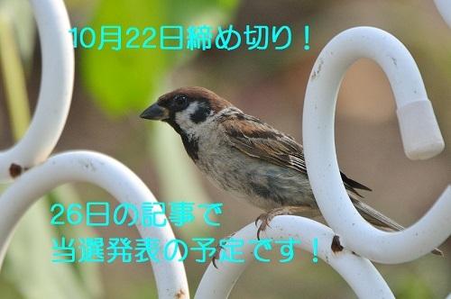 130_20171014174809ade.jpg