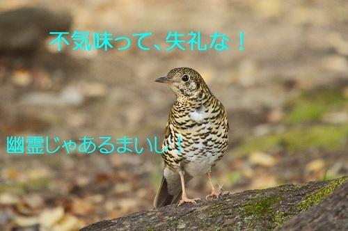 140_20171220181444bfe.jpg