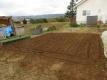 タマネギを植える畑