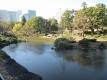 日比谷公園心字池
