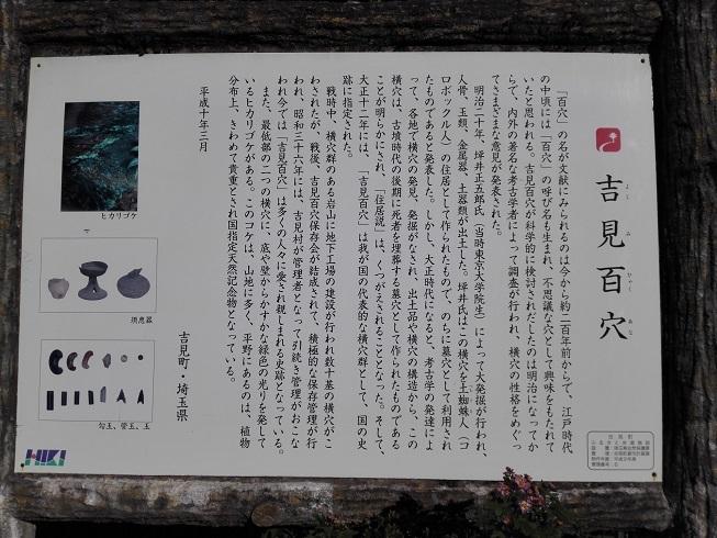IMG_20171111_142946.jpg
