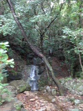 神倉神社 その2