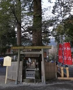 椿大神社 その5