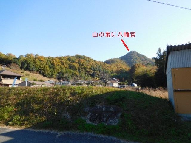 DSCN10361.jpg