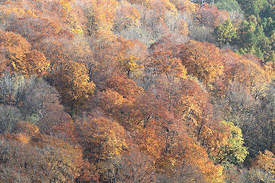 17-10-27_amagahage-gunma_00178.jpg