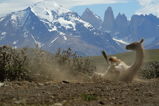 17-12-12_Paine-Chile_00110.jpg