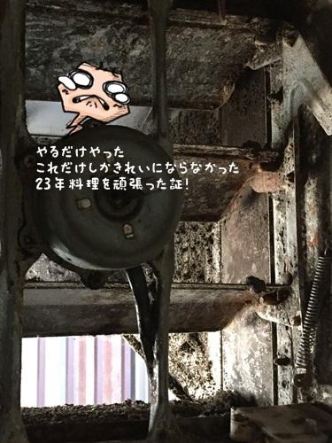 IMG_8124-1.jpg