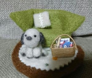 相澤一月画像