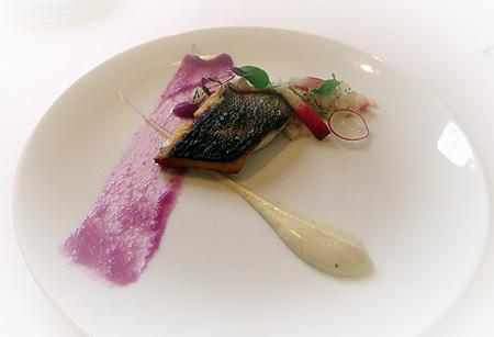 1108お魚 イサキ紫大根・