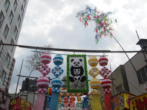 20170805・入間川七夕にゃーにゃー5・中