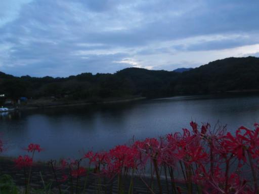 20170923・藤岡空17・夕暮れの竹沼