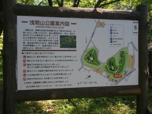 20170924・父墓参りネオン6