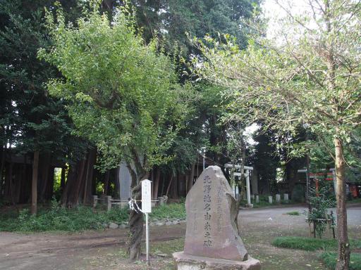 20171001・狭山湖1-10
