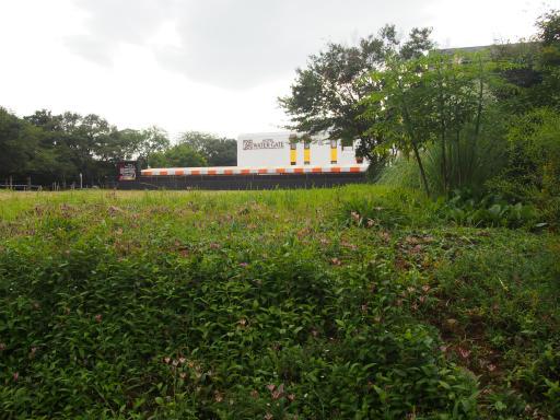 20171001・狭山湖3-09