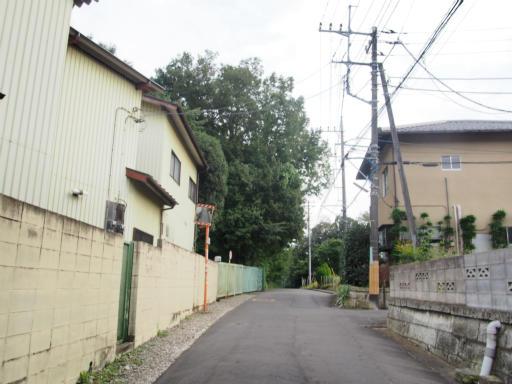 20171001・狭山湖3-08