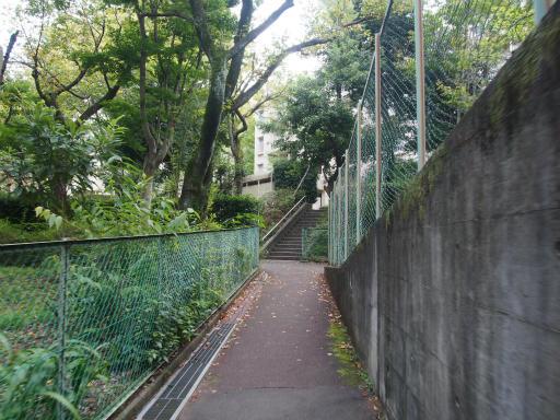 20171001・狭山湖3-19