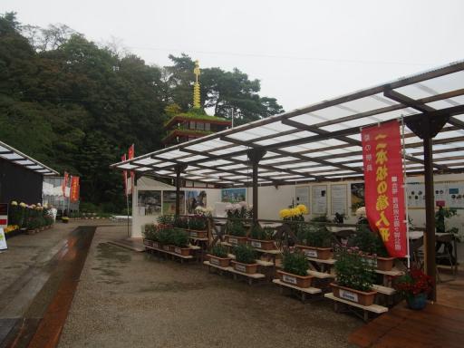 20171022・台風東北旅行空拡大10