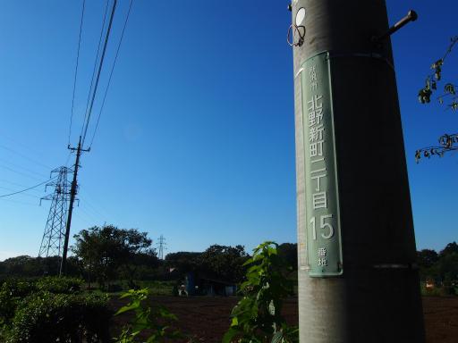 20171103・小手指散歩13