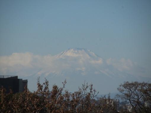 横浜0001_5