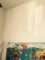 壁のノコギリ