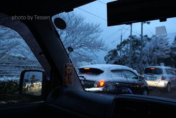 DSC01911雪