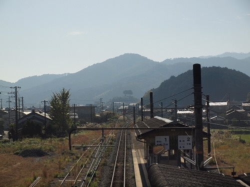 P1017878.jpg