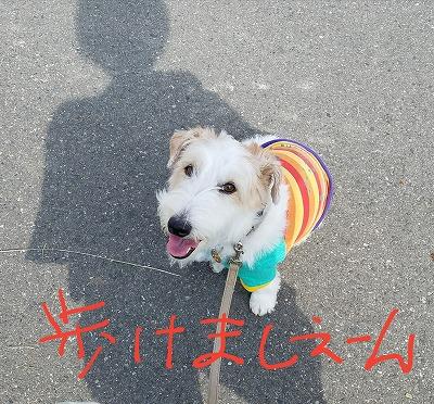 2017_10_08_9.jpg