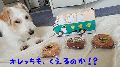 seo24th_6.jpg