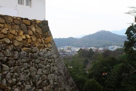 hikone348.jpg