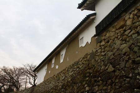hikone361.jpg