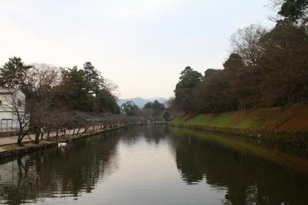 hikone363.jpg