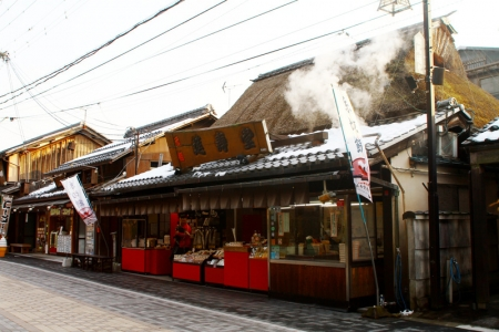 hikone379.jpg