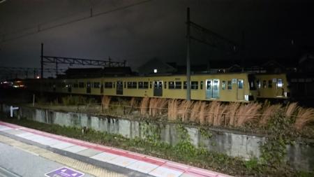hikone393.jpg