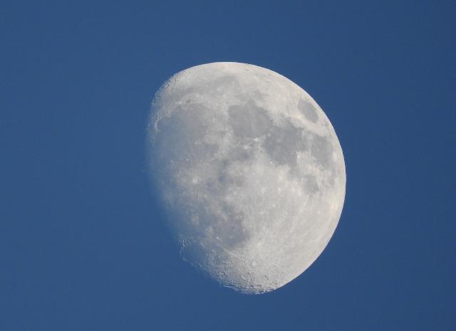 月CN0272