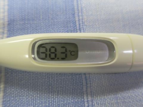 平成29年10月23日「熱が38度3分もあります。」②